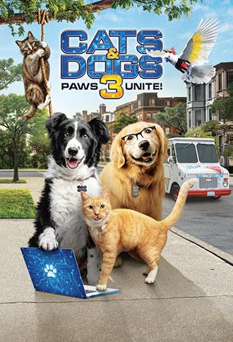 כלבים נגד חתולים 3