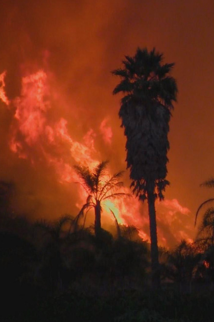 Burning_Ojai:_Our_Fire_Story